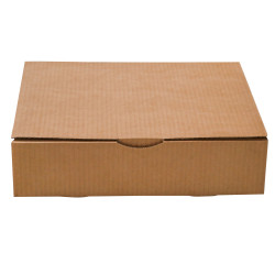 Postal box 33 x 25 x 8 cm for large format books